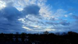 Zeer zacht en buiig novemberweer met veel wind in Waalwijk  (foto: Martha Kivits).