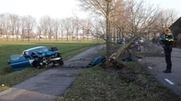 Een boom en een lantaarnpaal, die onder de boom ligt, verder uit de grond gereden. Foto: Marco van den Broek/SQ Vision.