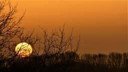 Een prachtige zonsopkomst donderdag in Waalwijk (foto: Martha Kivits).