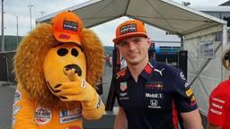 Twee Hollands leeuwen op één foto.