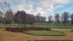 Het Philips van Lenneppark in Eindhoven (afbeelding: Google Streetview).