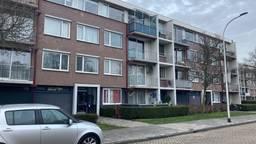 Foto: Omroep Brabant