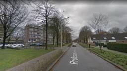 Een deel van de Professor Verbernelaan in Tilburg (foto: Google Streetview).