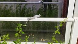 De 'bom', die Hans vond, vastgeplakt aan het raam van zijn appartement (foto: Hans).