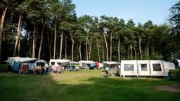 Op camping 't Zand was dit seizoen geen vrij plekje te vinden (foto: Roland Geppaard).