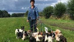 Jeannette met (een aantal van) haar honden (privéfoto)