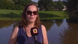 Hoogwater trekt veel bekijks in Boxmeer: 'Ik vind dit maar eng'