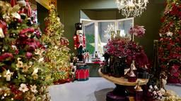 Kerstbomen, lichtjes, rood en goud onder bewaking van de notenkraker op de kerstafdeling van Coppelmans. ( Foto: Coppelmans)
