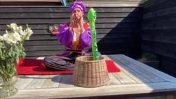 Fans spelen in hun tuin de Efteling na zoals de iconische Fakir. (Foto: @Pasjuhhh / Facebook)