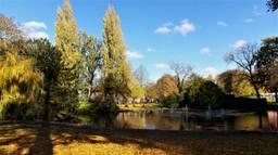 Breda wil meer groen zien, zoals in Park Valkenberg in Breda. (Archieffoto: Henk Voermans)