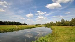 Zomer in Brabant (Foto: Ben Saanen)