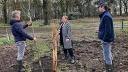 Mary Fiers, directeur van het Groen Ontwikkelfonds Brabant bij het planten van bomen op de Janmiekeshoeve in Mariahout.