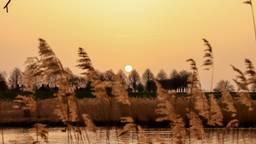 Zonsopkomst in Heesbeen (foto: Lida Verkade)