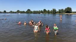 Bij de Lithse Ham genoten zwemmers van de warmte. Foto: Omroep Brabant