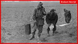 Britse militairen in de Biesbosch zoeken mijnen (foto: IWM).