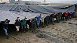 Veel handen gezocht voor een zware klus (foto Schneider Youngplants).