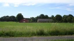 Provincie wil investeringen in veesector stimuleren (foto: archief).