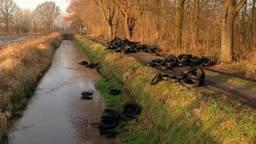 De gedumpte autobanden. (Archieffoto: Politie Gemert-Bakel)