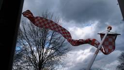 De Brabantse wimpel danst er op los in de wind in Deurne. (Foto: Christ Sars)