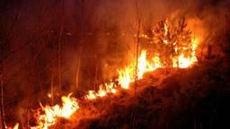 Het risico op natuurbranden in groot