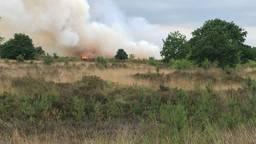 De bosbrand (foto: Hans van Hamersveld/Kijk en Klik media)