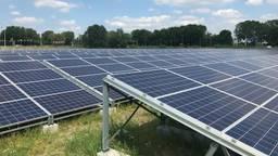 De 8000 panelen zullen energie leveren voor 500 huishoudens