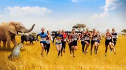 De Safari Run verdwijnt.