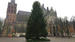 In Den Bosch staat tie al de kerstboom op de Parade