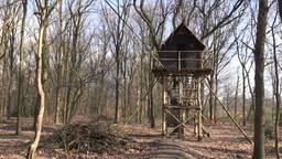De boomhut is nu veel hoger dan 2,5 meter.
