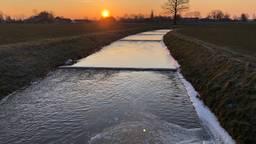 Het buitengebied tussen Helmond en Bakel (foto: Alice van der Plas)