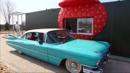 De Aardbeien Drive-in werd vandaag feestelijk geopend