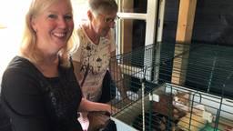 Patricia en Hetty bij de twee adoptiekatten uit Fort Oranje