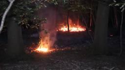 Er zijn verschillende brandhaarden. (Foto: Addy Smits/112journaal)