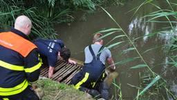 De brandweer redde de eendjes uit een duiker (foto: Erik Haverhals/Foto Persbureau Midden Brabant)