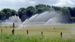 Voor beregening mag in delen van West- en Midden-Brabant geen water meer worden gepompt uit oppervlaktewater. (Foto: Waterschap Brabantse Delta)