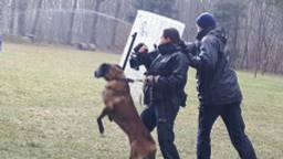 Archieffoto politiehonden ZWB