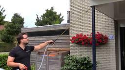 Wespenbestrijder Robin van den Hurk: 'Dit is een kalm volkje'