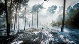 Deze brandweerman lijkt een eenzame strijd te voeren. (Foto: Sem van Rijssel/SQ Vision)