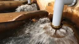 Ruim voldoende grondwater bij Brabant Water ondanks de droogte