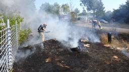 De bermbrand in Helmond was snel onder controle. (Foto: Danny van Schijndel)