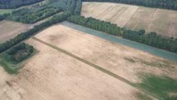 Zo droog is Brabant (Foto: Wim Heesterbeek).