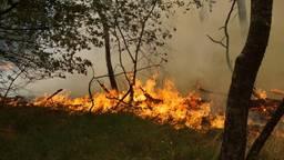 Vorig jaar juli woedde er een grote brand in natuurgebied Loonse en Drunense Duinen. (Foto FPMB)