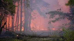 Donderdag woedde er een flinke brand in het gebied. (Foto: Berry van Gaal/SQ Vision Mediaprodukties)