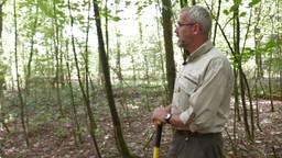 Jan Rots van Bosgroep Zuid-Nederland in een goed stukje bos
