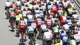 De Vuelta komt in 2020 naar Brabant. (Foto: VI Images)