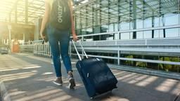 Een Bossche reisorganisatie introduceert de 'coronagarantie'. (Foto: Pexels)