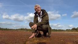 Peter Voorn van Natuurmonumenten
