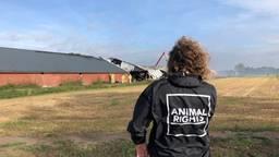Dierenactivist Erwin Vermeulen bij de afgebrande stal in Asten-Heusden