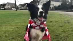 Zelfs hond Buddy kreeg een eigen sjaal. (foto: Raymond Merkx).
