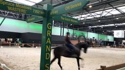 Paardensport in de Brabanthallen.
